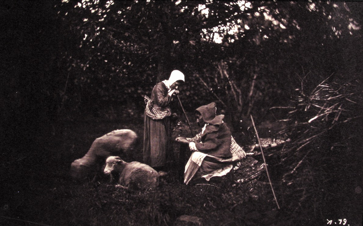 Two Shepherdesses Resting, with Two Sheep