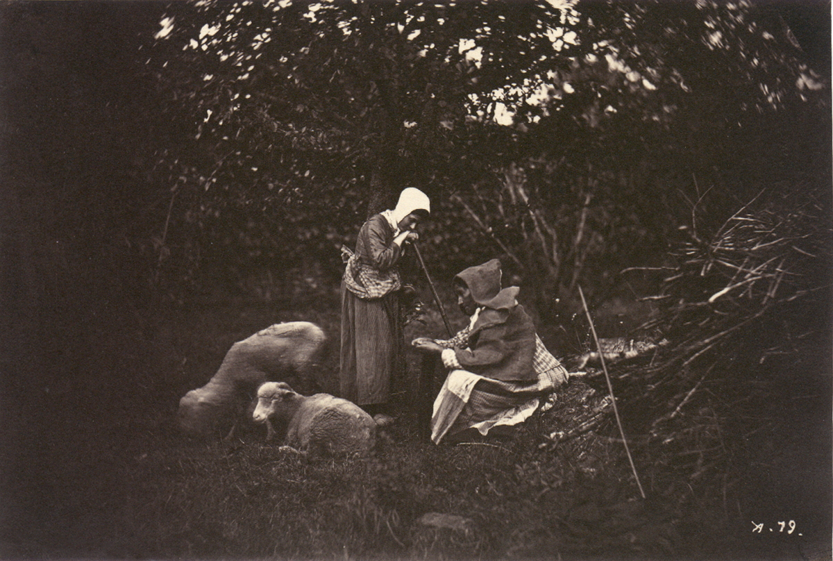 Two Shepherdesses with Sheep